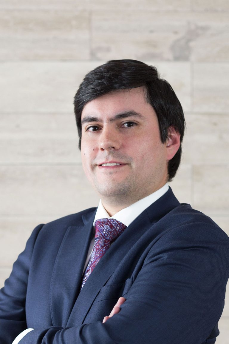 Alejandro Werlinger V.